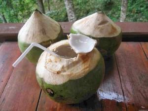 cocos2