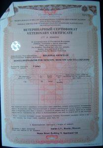 Ветеринарный сертификат Форма 5а