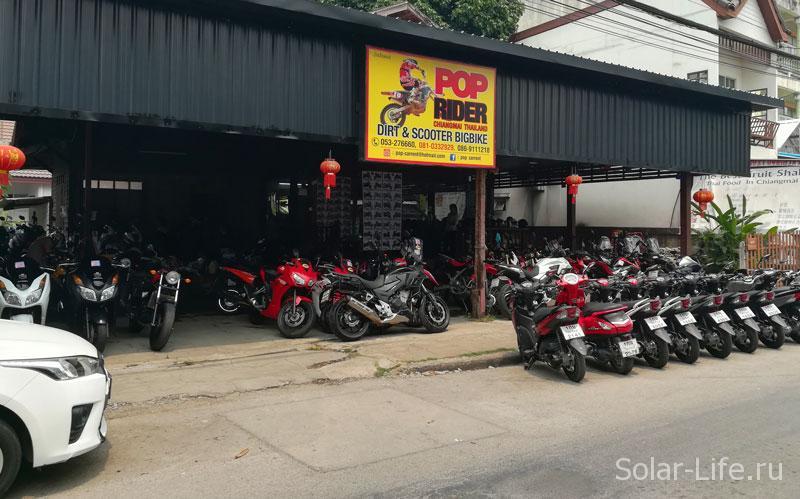 motobike-chiangmai-pop-rider