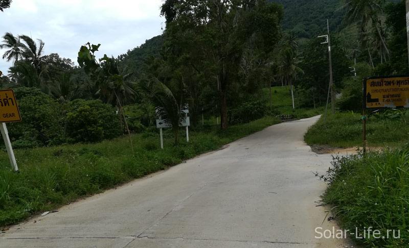 road_Buddha_Teepangkorn